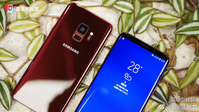 Burgundy Red Galaxy S9 and Galaxy S9+