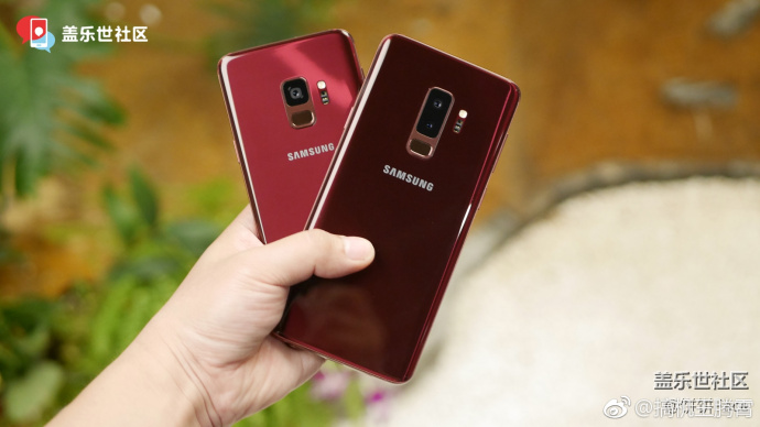 Burgundy Red Galaxy S9 and Galaxy S9+4