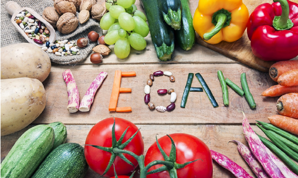 Going Vegan How To Have the Perfect Vegan Diet and Love it