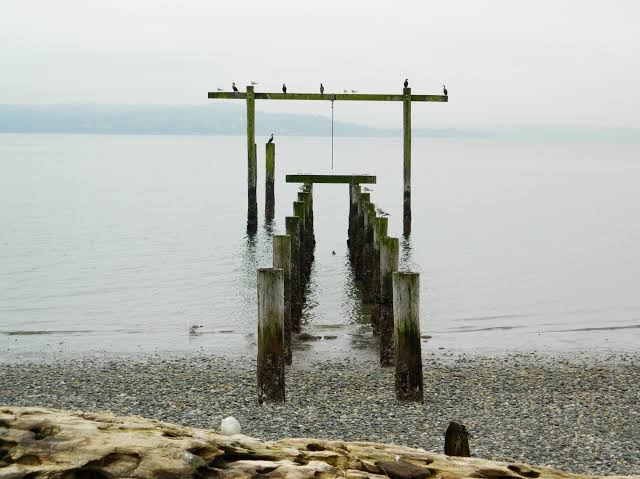 What to see and do on Vashon Island
