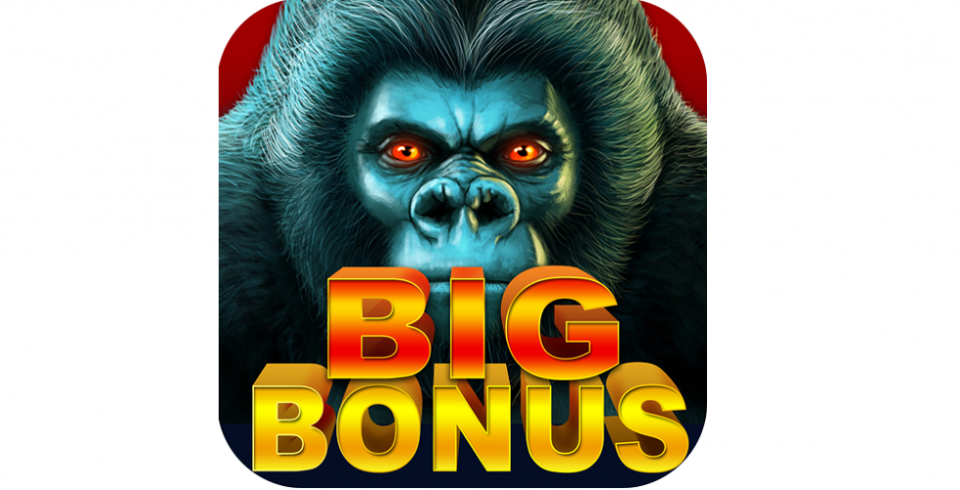 Slot Games with Bonuses to Play 1