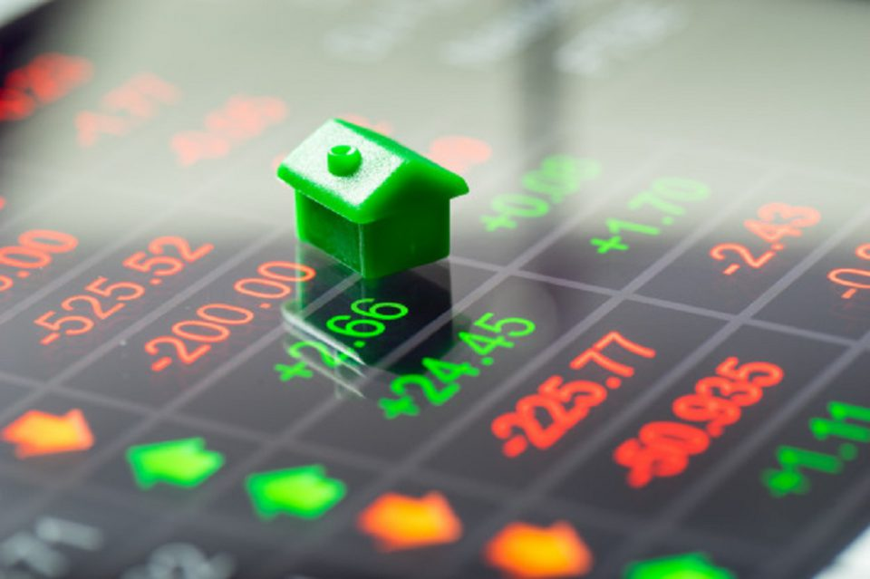 Real Estate or Stock Market