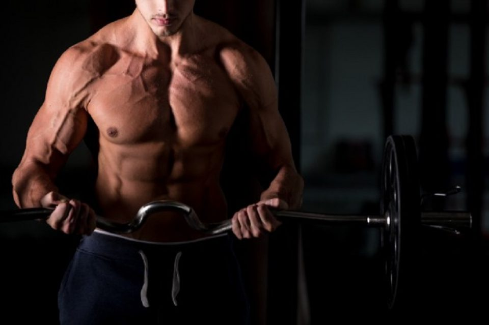 Bodybuilding Tips to Help You with Your Fitness Journey